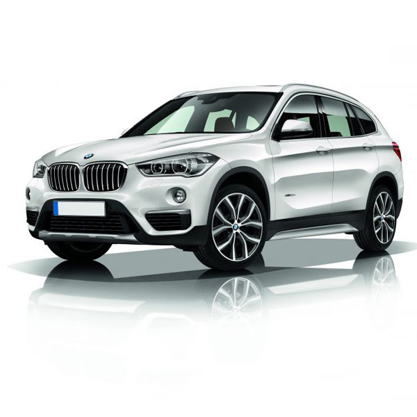 BMW X1 Car Battery