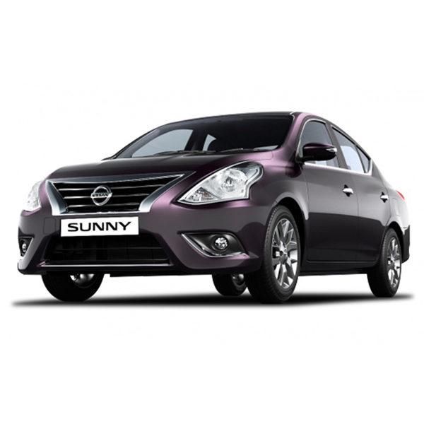 Nissan Sunny Car Battery