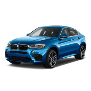 BMW X6 Car Battery